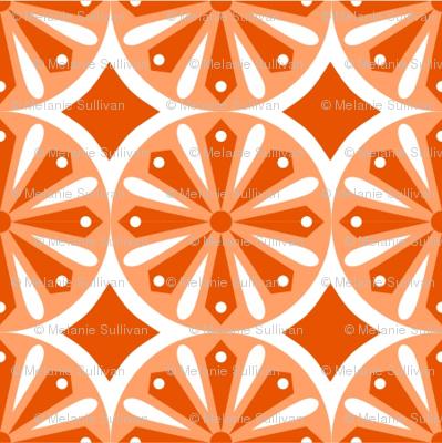 Sliced Citrus Orange