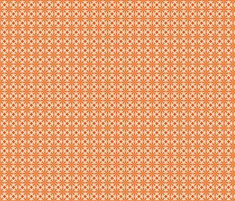 Rsliced_citrus_orange_shop_preview