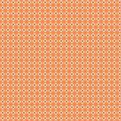 Rsliced_citrus_orange_shop_thumb