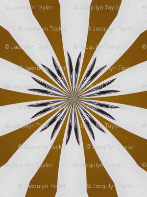 Kaleidescope 3619