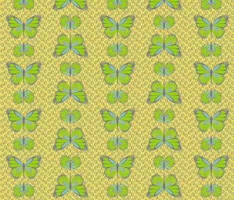 Rcocoon_butterflies_lemon_shop_preview