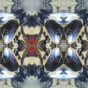 Seashells Kaleidoscope