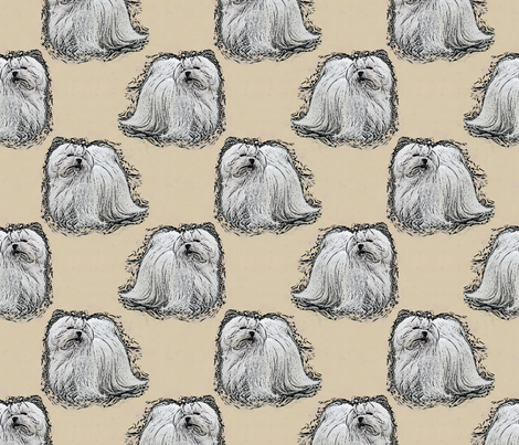 Posing Maltese - tan fabric by rusticcorgi on Spoonflower - custom fabric