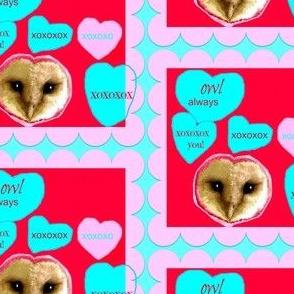 Owl Always XOXOX You!