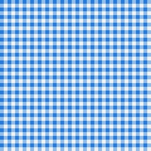 Gingham ~ True Blue