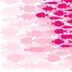 Pink Fish Funk Scatter