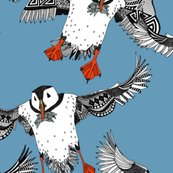 Ratlantic_puffins_blue_st_sf_18052016_shop_thumb