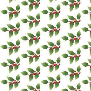 Leaf-holly