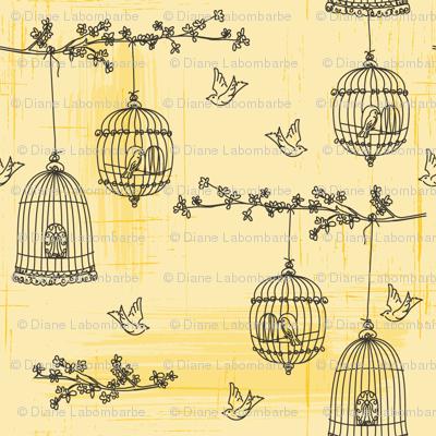 Bird &  Birdcage