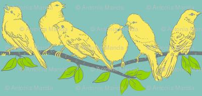 birds_on_branch
