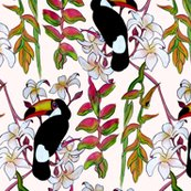 Rrrtoucan_step_for_spoon_shop_thumb