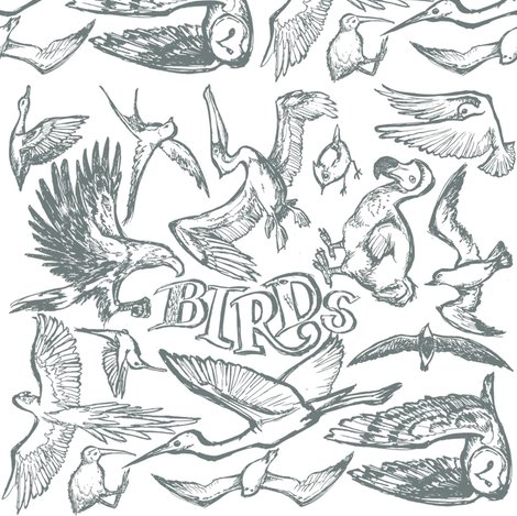 Rrrrrrrbirtds_shop_preview