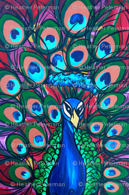 Impervious Mr Peacock