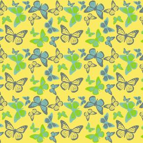 Monarch Medley