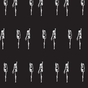 Skeleton Reverse