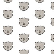 Koala_bear_face_shop_thumb