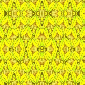 Purple Sage var yellow