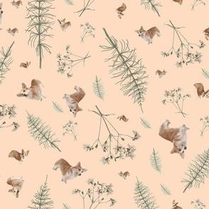 corgi botanics - soft pink