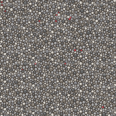 Winter Berries on Pebbles