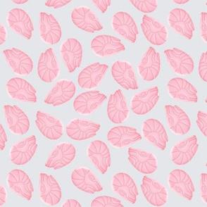 Pink Shrimps