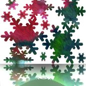 Rsnowflakes_melting_10713_resized_shop_thumb