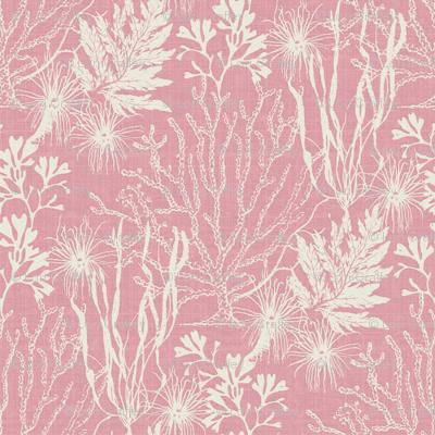 Poseidon Pink