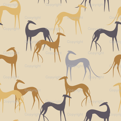 Sighthounds