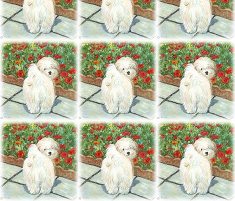 Havanese Dog & Poppies fabric by greerdesign on Spoonflower - custom fabric