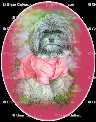 Havanese Dog in Pink Coat