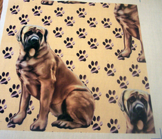 1591207_rmastiff_with_pawprints_comment_248494_thumb