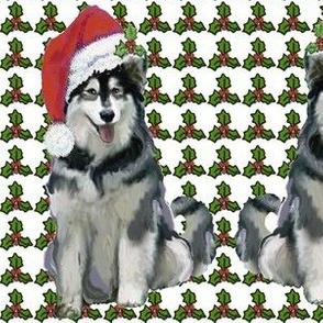 alaskan_malamute_christmas