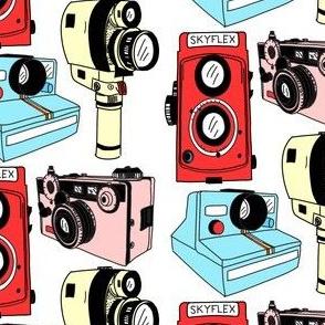 Mixed Vintage Cameras