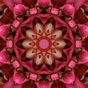 Red Floral Paper tile52