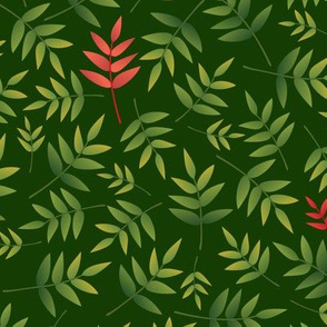 Nandina leaves-DarkGreen