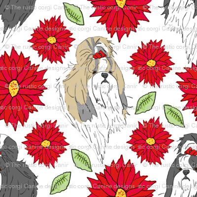 Shih Tzu and Chrysanthemum - red