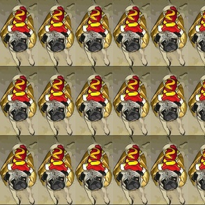 hotdog pug