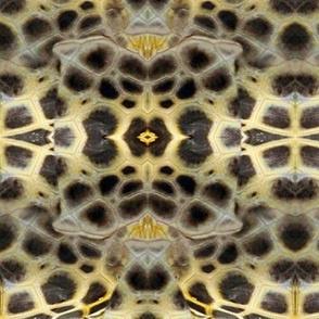 Turtle Skin, softer turtle skin pattern