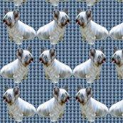 1599884_rskye_terrier2_shop_thumb