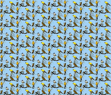 Birds! fabric by robin_rice on Spoonflower - custom fabric