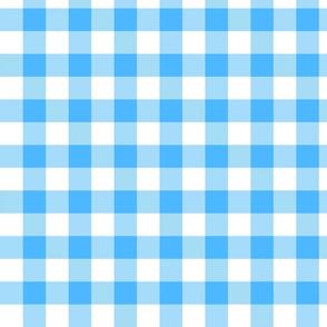 utensiless_blue_gingham