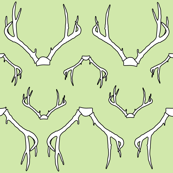 Antlers Green