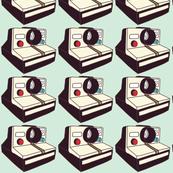 Polaroid Cameras Mint