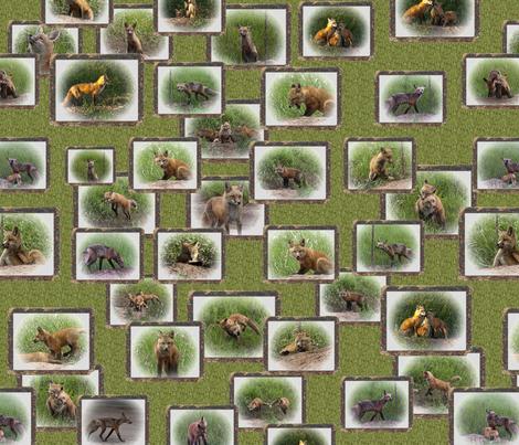 fox_2_pattern_resized fabric by jktauzell on Spoonflower - custom fabric