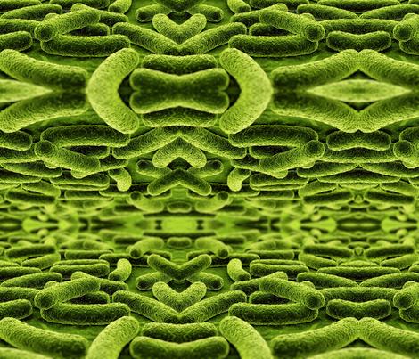 Mycobacterium tuberculosis fabric by craftyscientists on Spoonflower - custom fabric