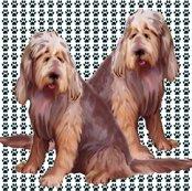 1605929_rotterhounds_shop_thumb