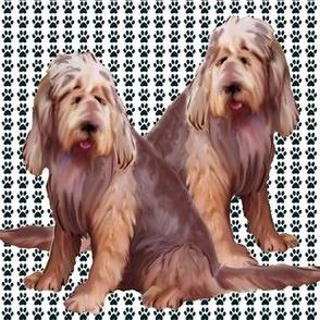 otterhounds