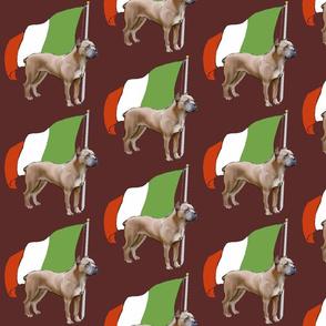Cane Corso wth Italian Flag