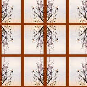 Dragonfly_Marsh Grass_Silhouette