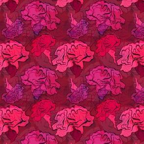 Clavel Flower