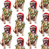 Rdogue_de_bordeaux_santa__shop_thumb